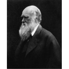 Charles Darwin. Photo taken in 1868 by Julia Margaret Cameron